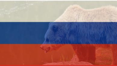 fancy bear russian flag